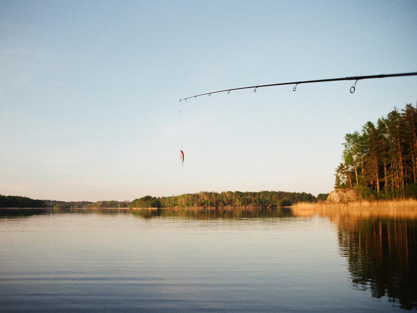 Выбор прикорма для рыбы на озере: что нужно знать