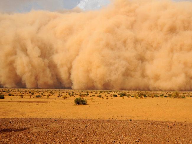 Европу может накрыть гигантским пылевым шлейфом из Сахары