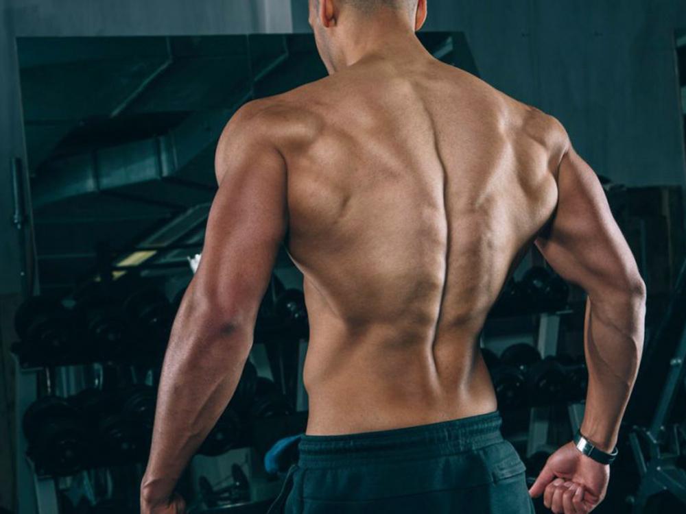 Качаем спину в тренажерном зале: самые эффективные упражнения