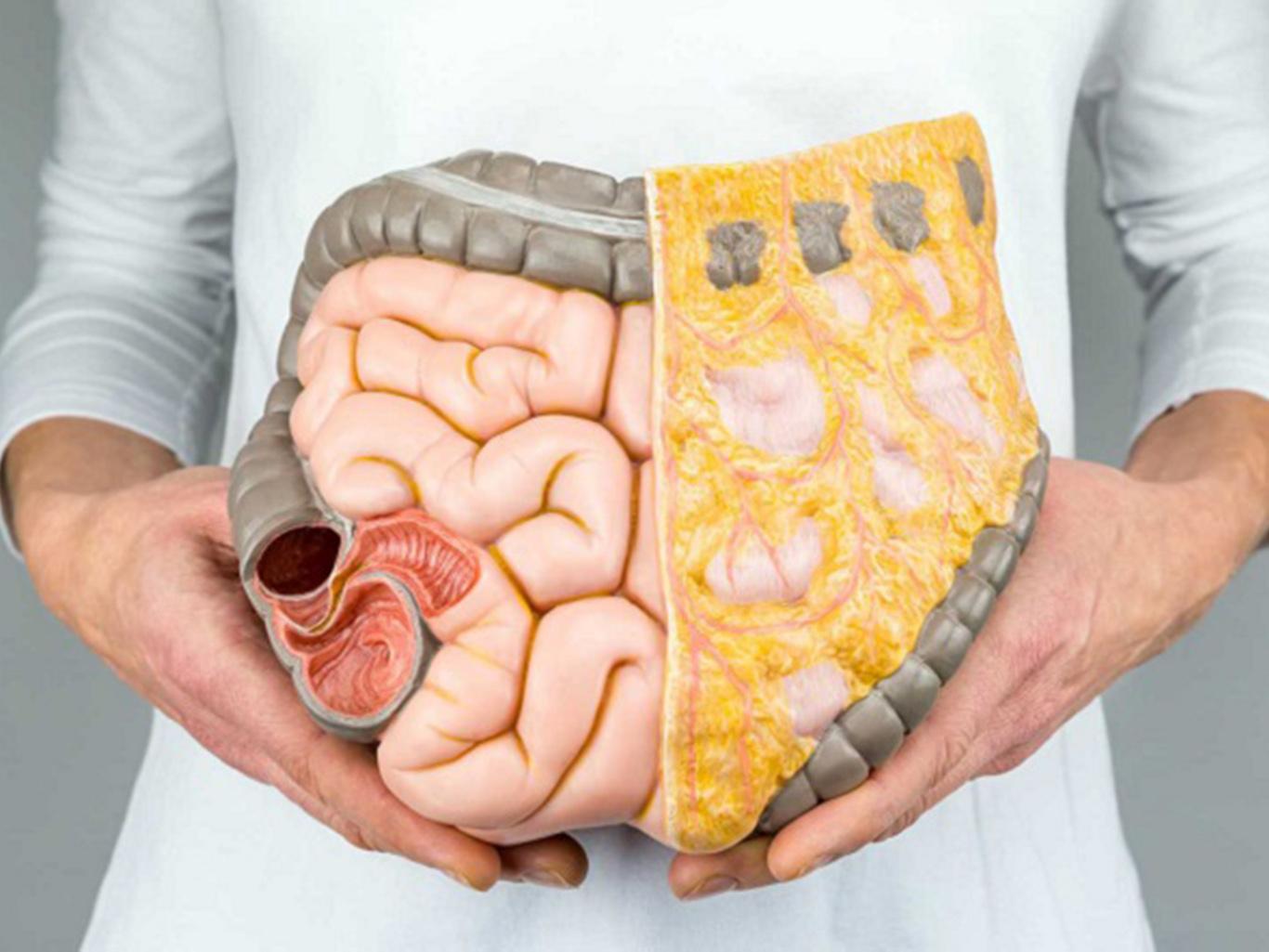 «Генеральная уборка» организма: все, что нужно знать о шлаках и токсинах