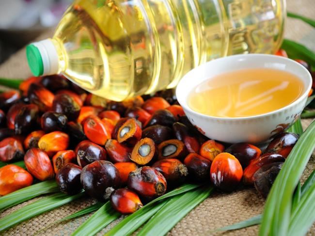 Названа основная опасность пальмового масла