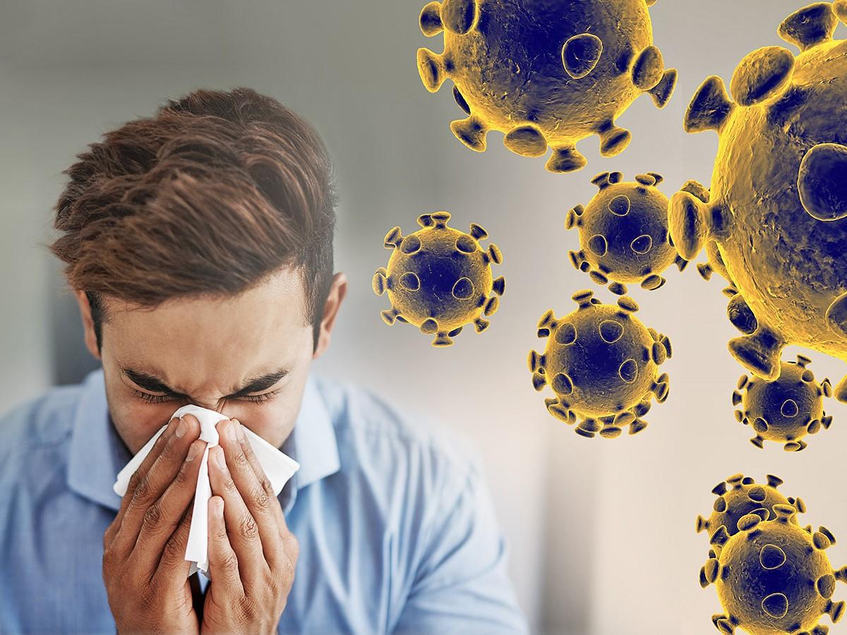 12 фактов про коронавирус: все, что необходимо знать о COVID-19