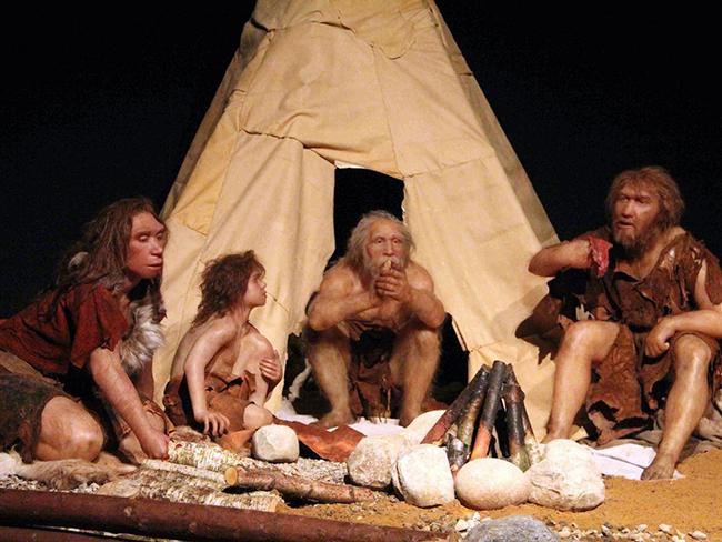 Эксперты воссоздали внешность предков людей