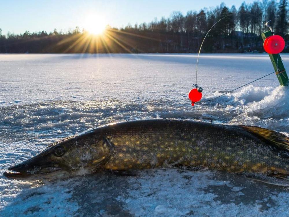 Настоящий мужской релакс: собираемся на зимнюю рыбалку