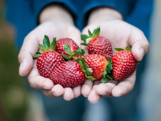 Некоторые овощи и фрукты могут быть опасными для здоровья