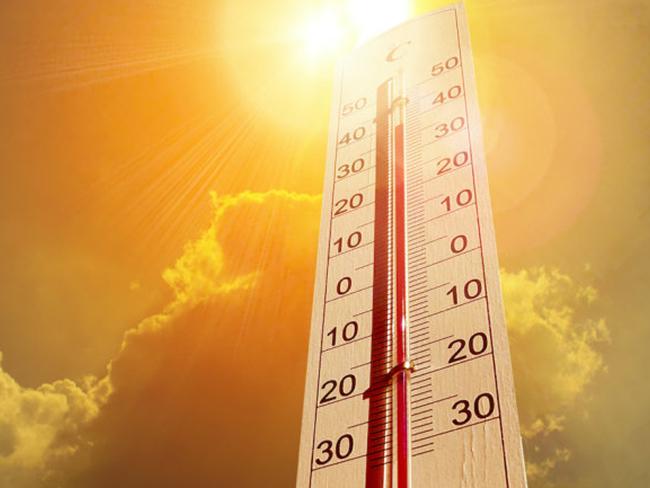Ученые рассказали о неблагоприятном влиянии жаркого климата
