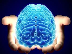 Эксперты: человеческий мозг способен функционировать в режиме «автопилота»