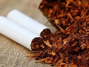 Названа неожиданная польза табака