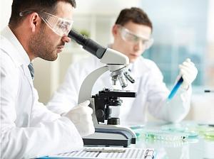 Ученые открыли новый человеческий орган