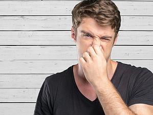 Почему запахи важны для мозга человека и жизни в целом