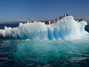 Таяние ледников на планете не остановить