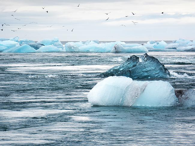 Исследователи рассказали о вероятных последствиях изменения климата