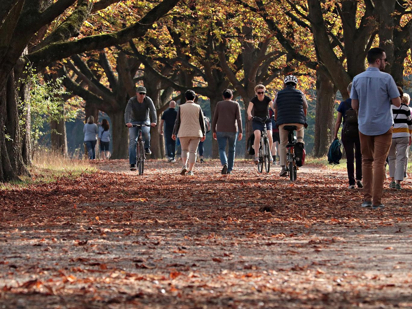 Чем заняться осенью: 10 идей для нескучного межсезонья