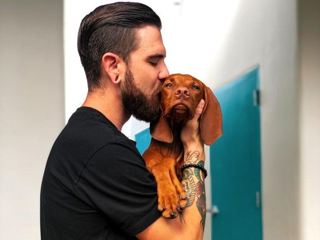 Доказано: собаки продлевают жизнь своим хозяевам