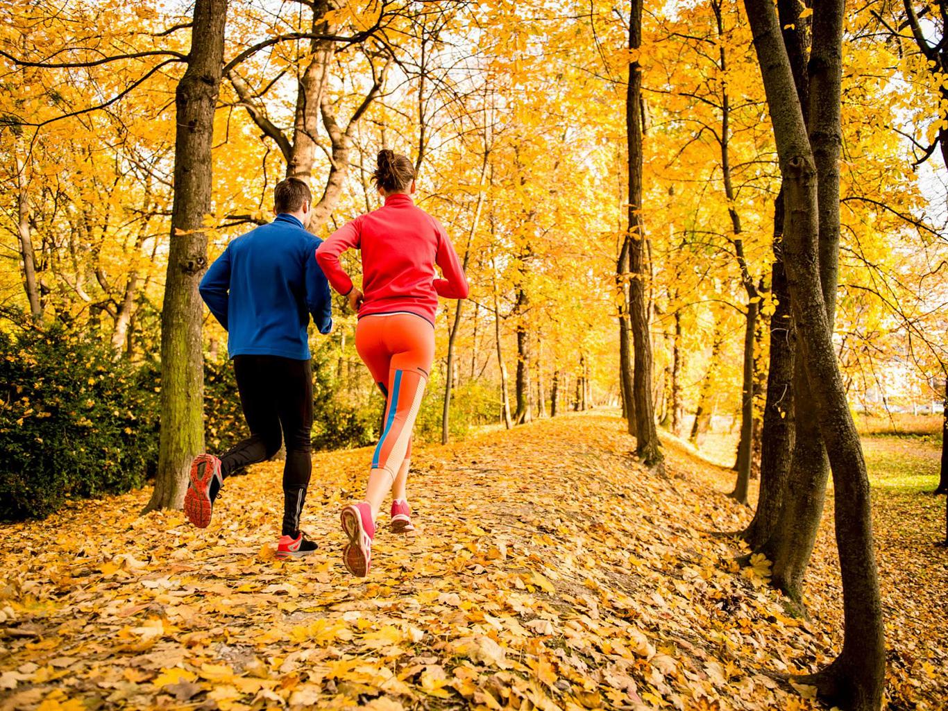 ТОП-10 ошибок во время тренировок осенью