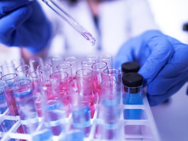 Ученые рассказали о связи группы крови и иммунитета