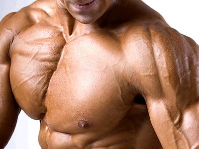 Изображение - Крепление мышц плечевого сустава anatomiya-myshts-plech