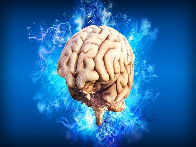 Исследователи рассказали, поражает ли коронавирус клетки головного мозга
