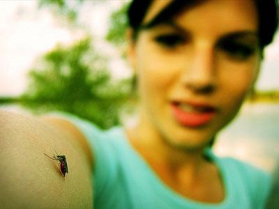 Комары выбирают свою жертву по запаху