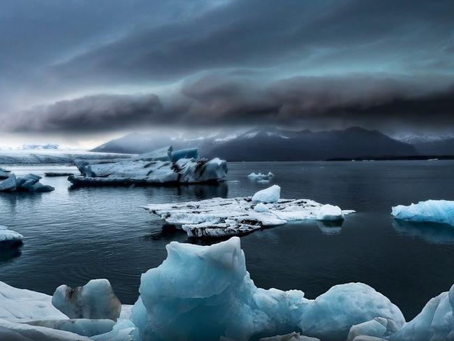 Ученые установили, могут ли водоросли в Арктике остановить глобальное потепление