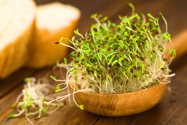 Какие полезные витамины в брокколи