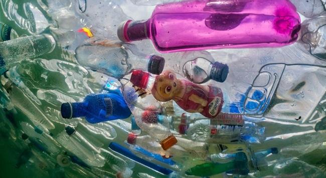 Эко-привычки, которые помогут спасти Планету
